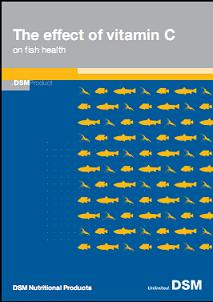 The effect of vitamin C on Fish Health